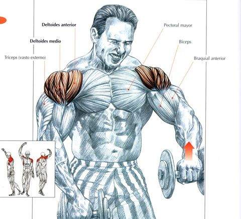 Ejercicios Para Deltoides Trapecio Abdominales Exercises I Do These With 20 Lbs Dumbbells Shoulder Workout Exercise Fitness Body