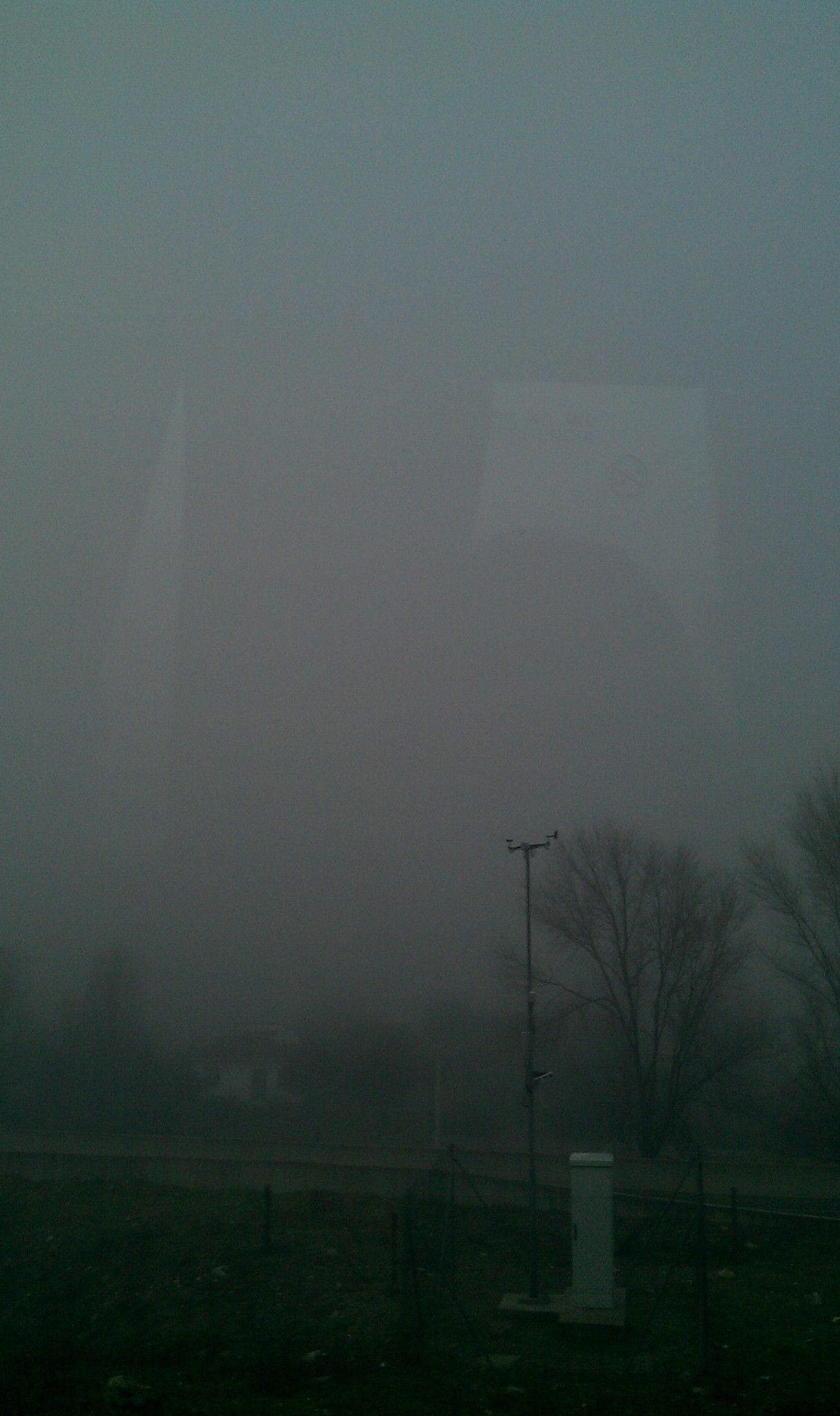 fog and winter (Madrid, Spain)