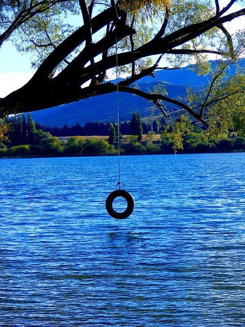 lake in new zealand - well which kind didn't want to have a lake in his garden with a tire-swing hanging from a tree?