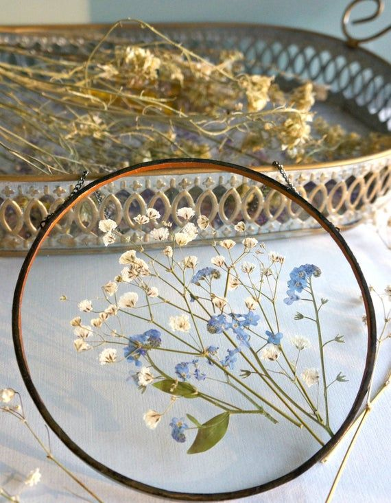Photo of Pressed flower frame White gypsophila Blue forget me not Small white flowers Round frame Stained glass Flower lover gift Floral room decor