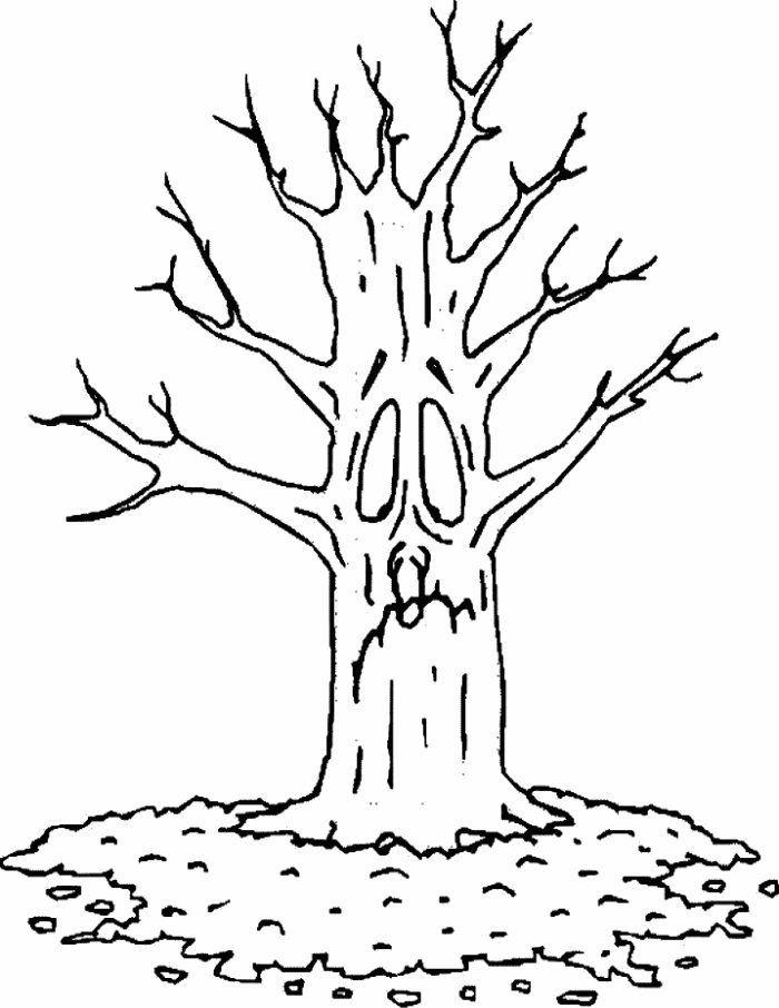 coloring pages - trees   autumn tree coloring page 2 700×906 ...