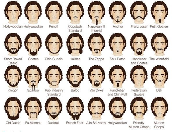 Fine Names Of Facial Hair Styles You Need To Know Beards Styles Trend Natural Hairstyles Runnerswayorg