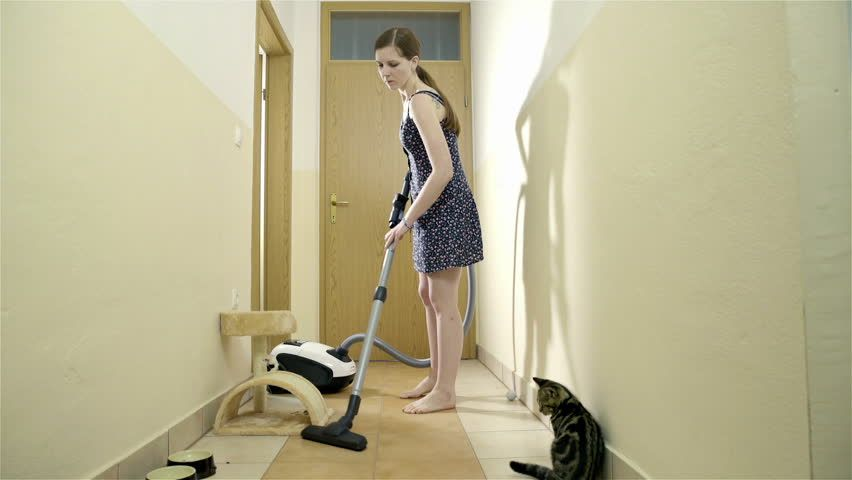 House Cleaning Clean House Cleaning Upholstery House Cleaning Services