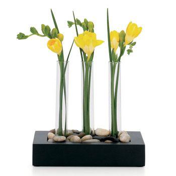 Test Tube Vase, $30