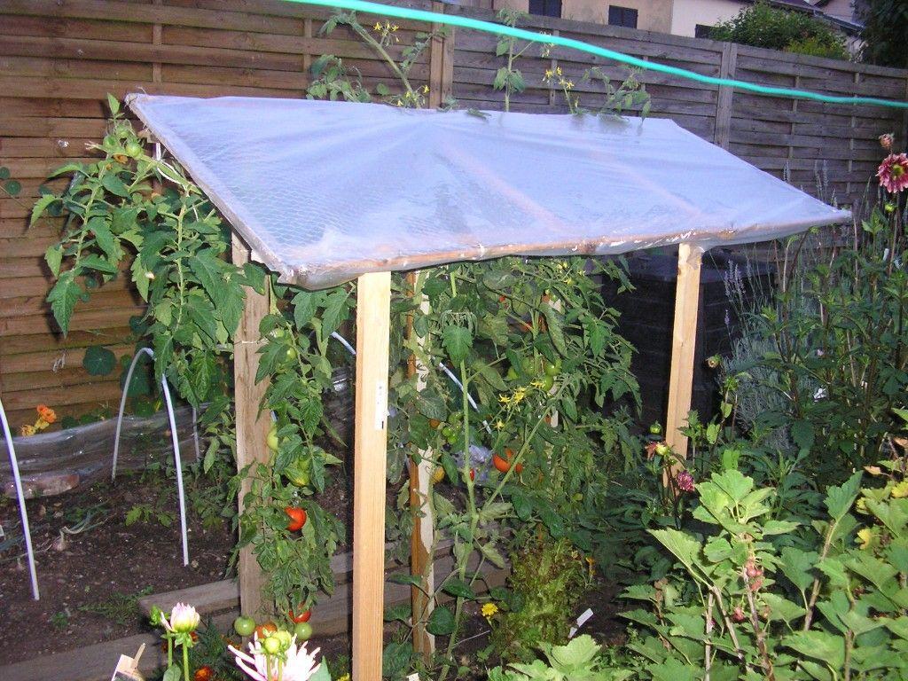Astuce pour prot ger les tomates de la pluie jardinage pinterest - Tunnel de protection pour potager ...