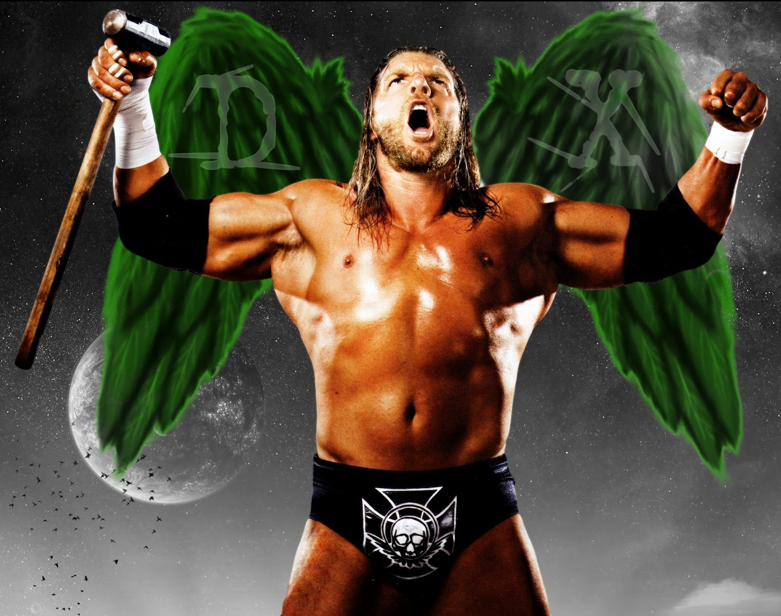 Triple H Aka Hunter Hearst Helmsley The Game The Cerebral Assassin The King Of Kings Triple H Wwe Wwe Pictures