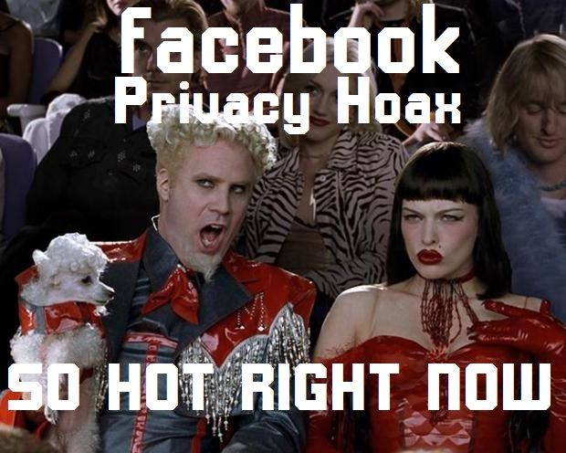 Https Www Google Com Search Q Facebook Privacy Hoax Funny Memes Best Funny Pictures Funny Pictures