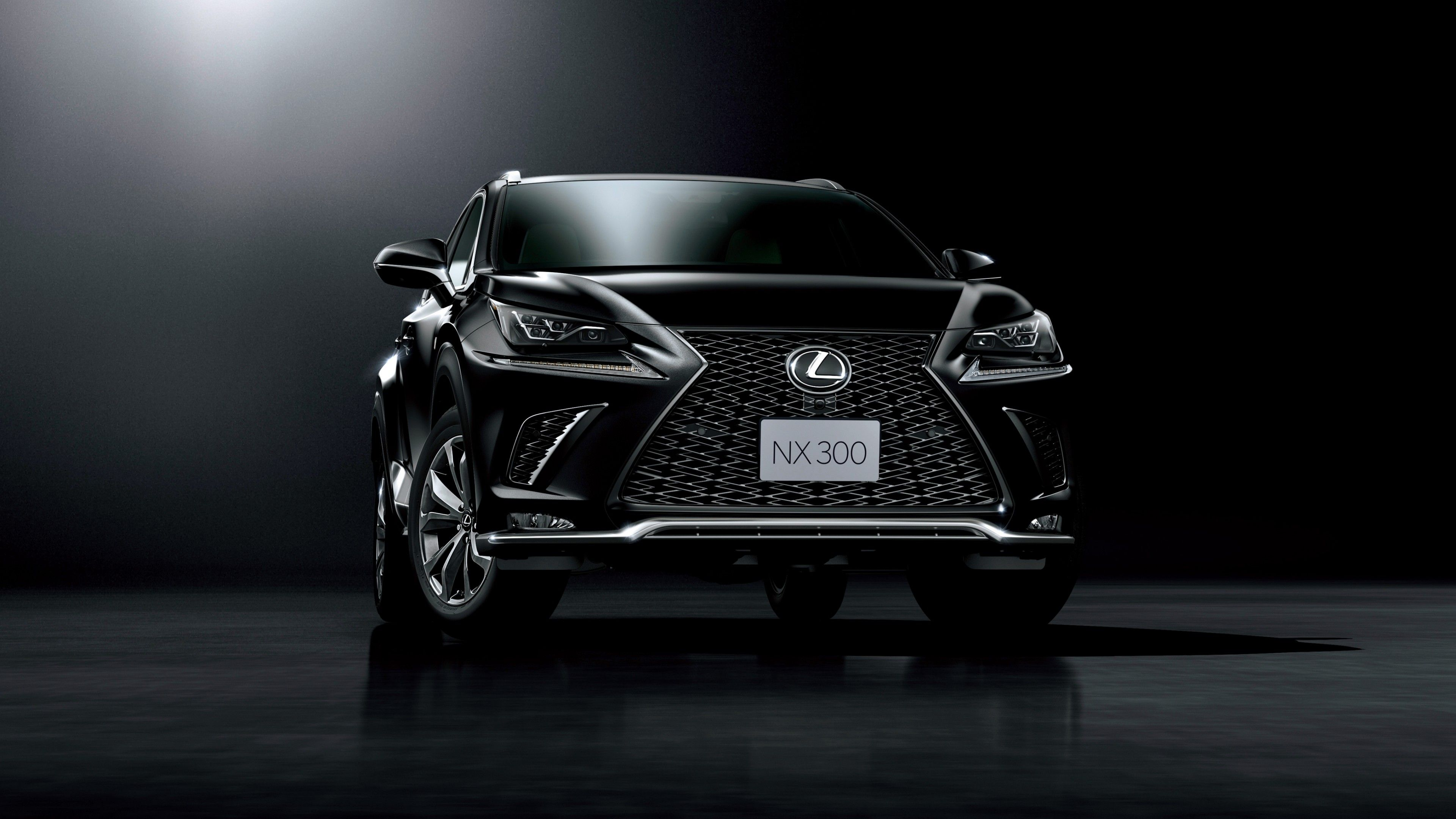 Stealth Mode Really Works For This Stunning 2018 Lexus Nx300