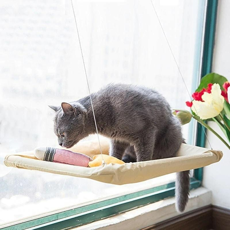 Window-Mounted Cat Hammock Bed . 👉Get yours now at ...