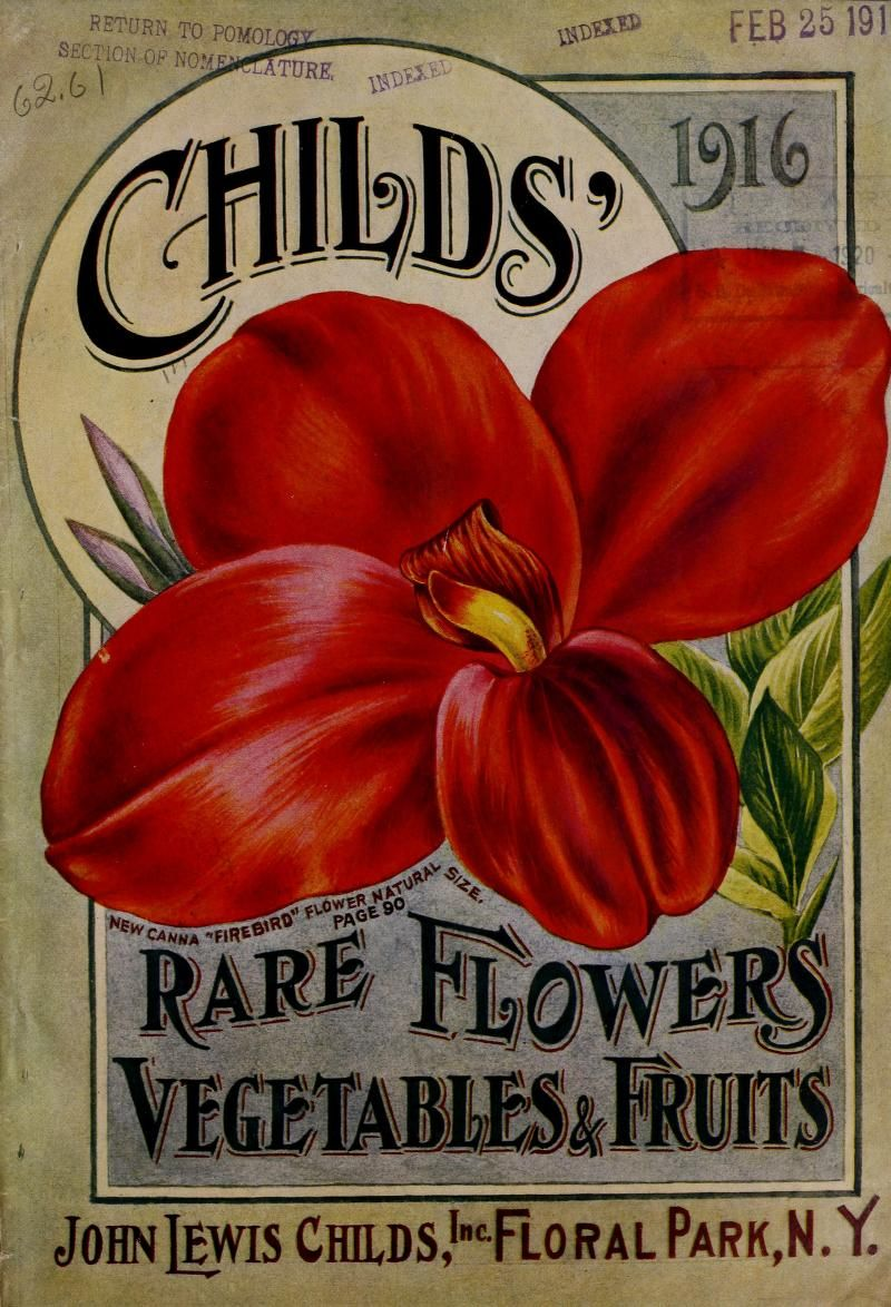 Childs' rare flowers, vegetables & fruits 1916