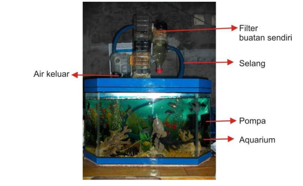 Tips Membuat Filter Aquarium Tanpa Kuras Air Selamanyaaaaa 100 Tahun Alhamdulillah The