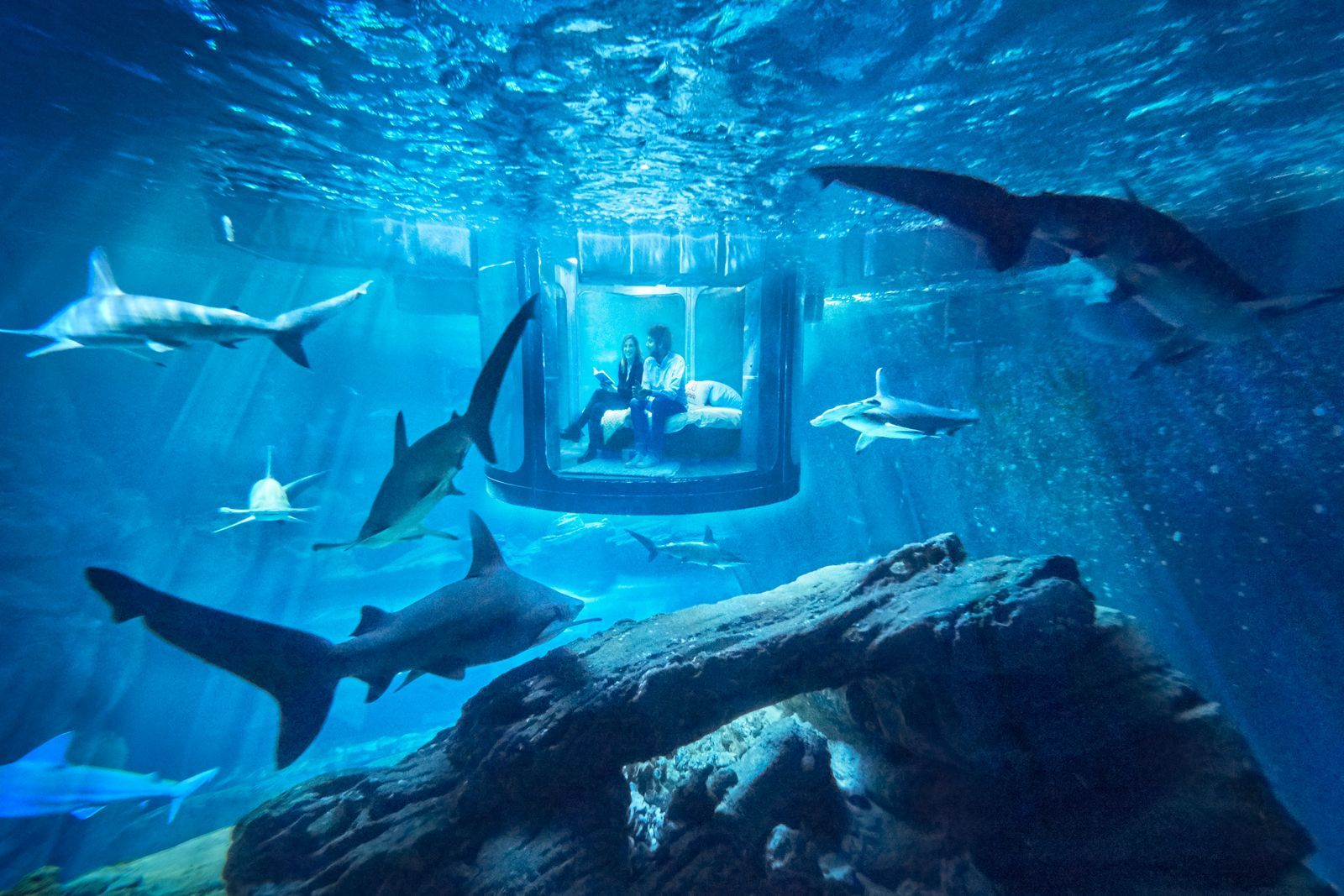 this underwater airbnb is insane favorite places spaces
