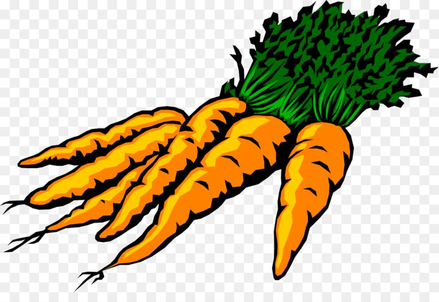 Free Carrot Clipart Pictures Food Free Printable Clipart With