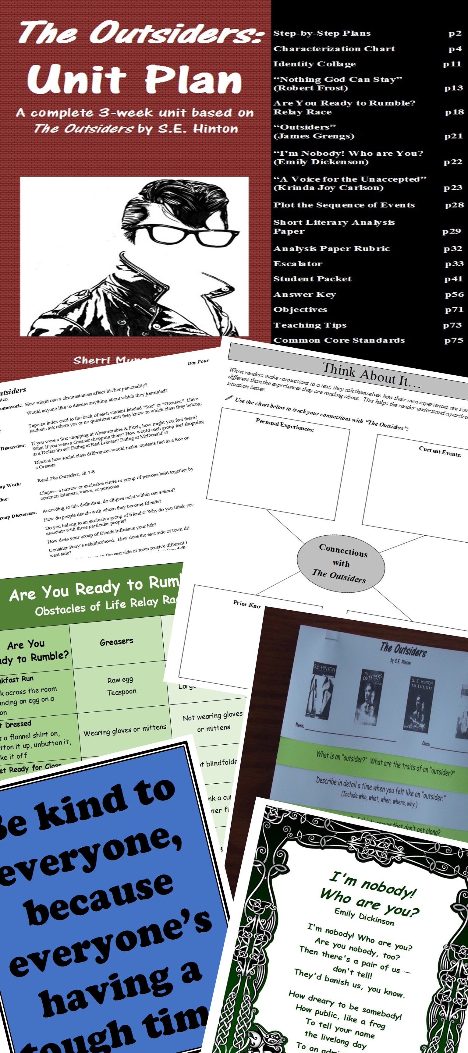 Outsiders By S E Hinton Unit Plan Novel Guide Lessons