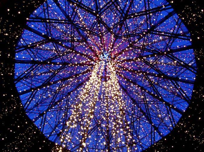 b423fa7d9b60ce1f8b9a5c741c7b278a - Garvan Gardens Hot Springs Christmas Lights