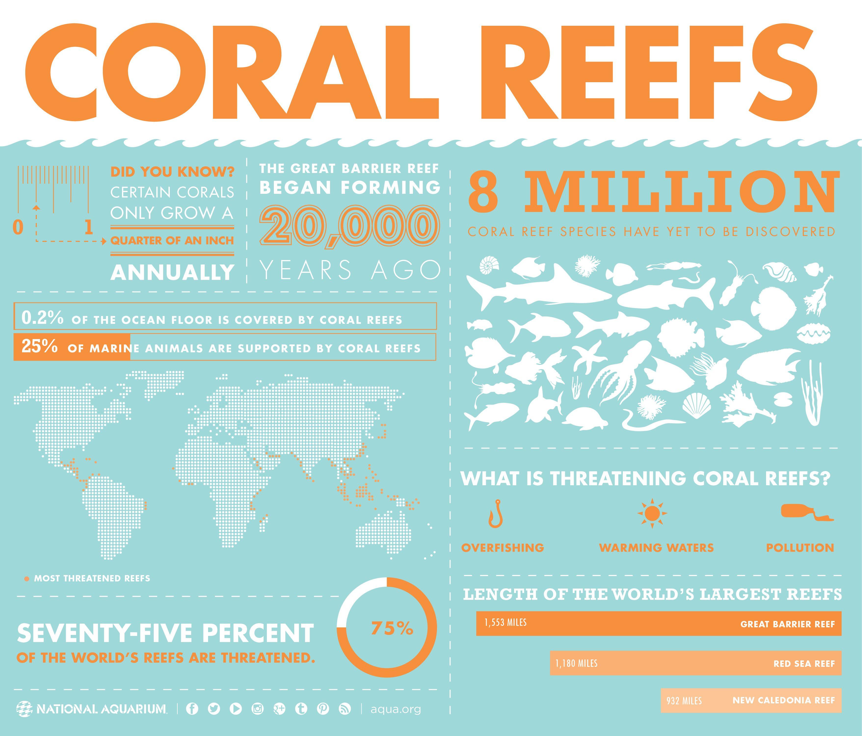 National Aquarium Coral Reef Infographic