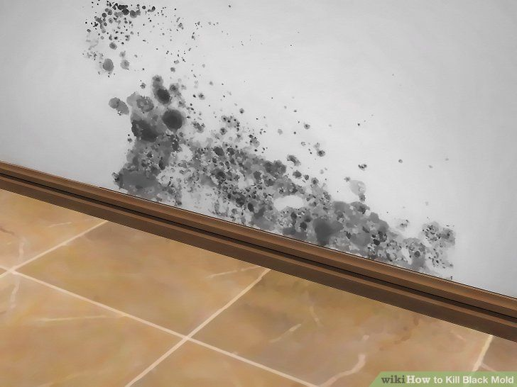 Mold Can Cause Allergic Reactions And Respiratory Issues It S Important To Know How Get Rid Of Black When You Do Find In Your House