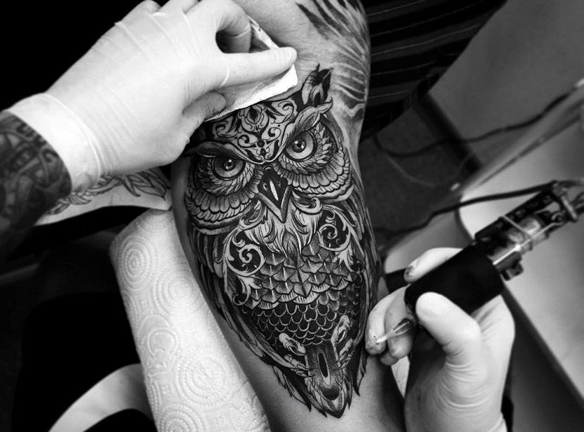 Pin En Tatuajes De Buho