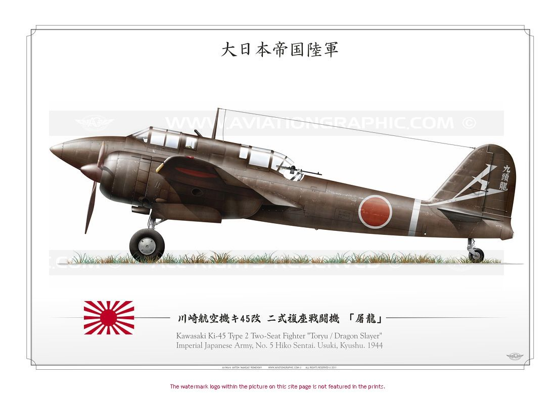 IMPERIAL JAPANESE ARMY (AVIATION) . 大日本帝國陸軍 : 川崎航空機キ45改 二式複座戦闘機 「屠龍」 No. 5 Hikō Sentai. Kyushu, 1944 / Ki-45 Toryu