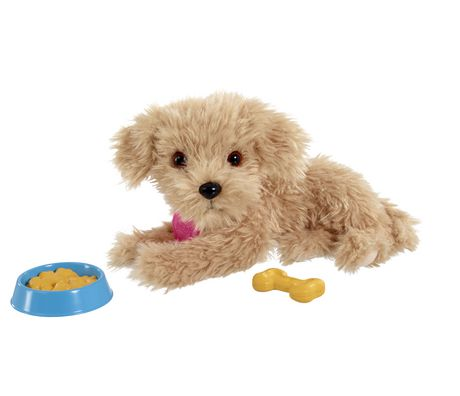 Scruffies Charlie Feed Treat Puppy Plush Golden Beige Lr44 Pet
