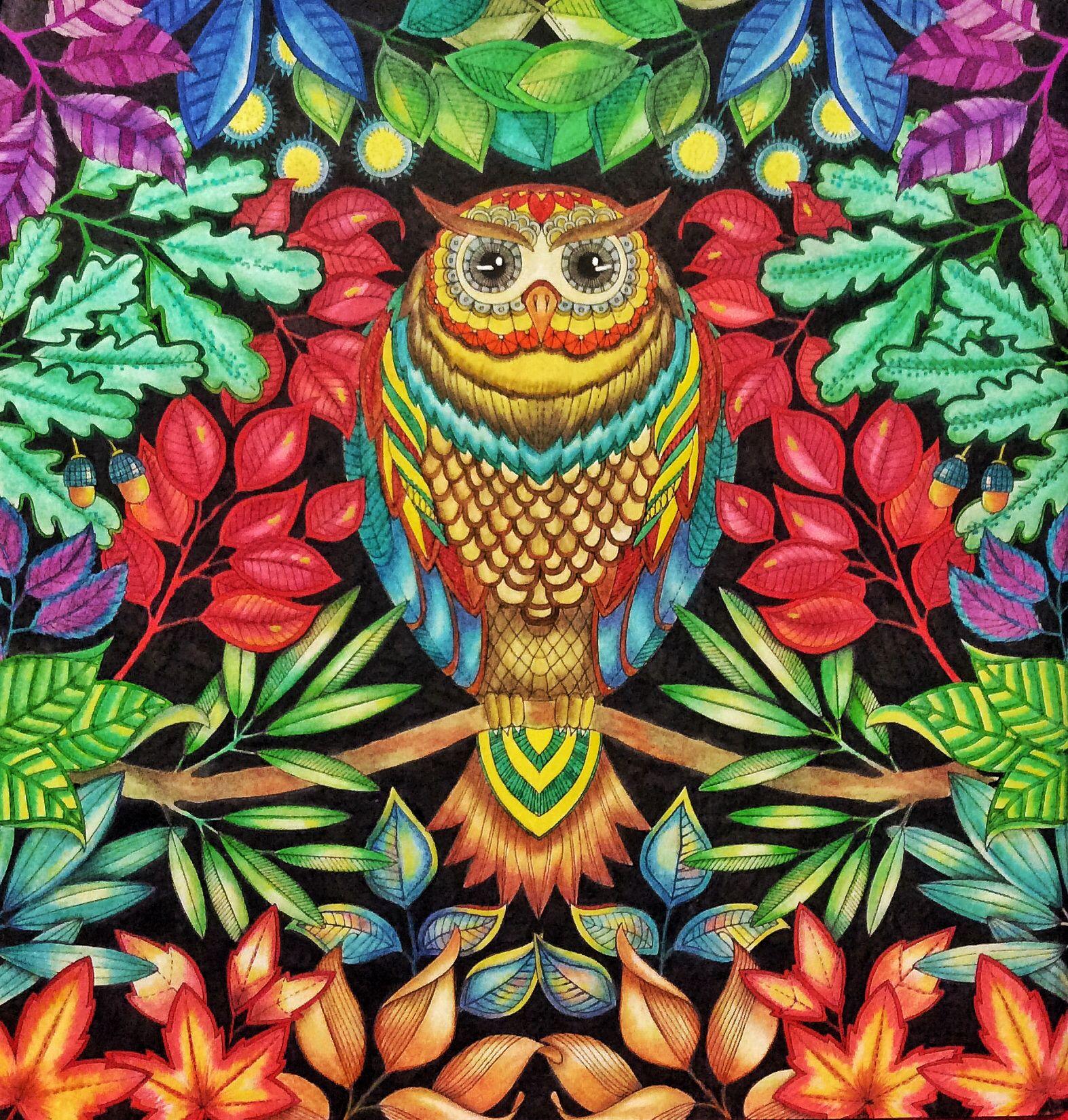 From Secret Garden Derwent Coloursoft Pencils Staedler Fine Liners Uniball SIgno