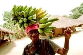 ilha de orango a las bijagos,,,és un matriarcat