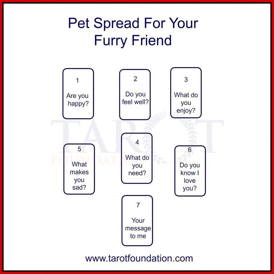 pet spread | So Many Tarot Spreads! | Tarot spreads, Tarot
