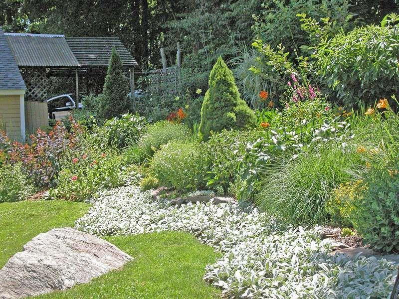 How To Landscape A Sloped Yard Hillside Landscaping Large Backyard Landscaping Backyard Landscaping