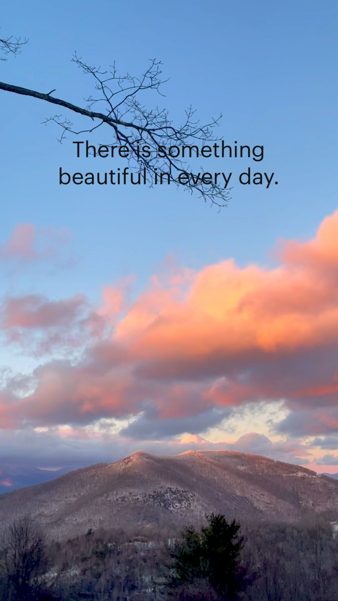 There is something  beautiful in every day.