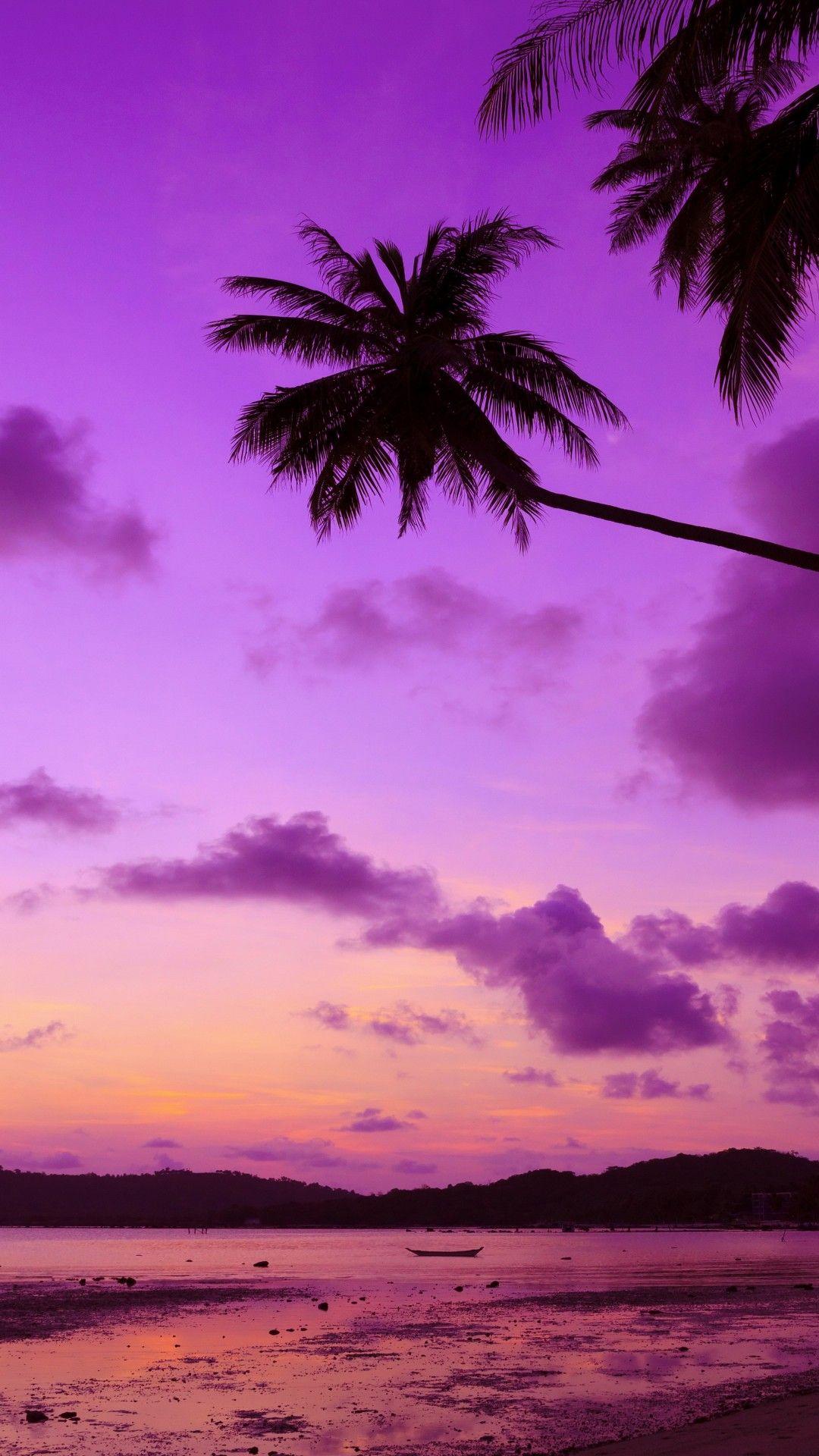 Download Beach Sunset Wallpaper High Resolution For Iphone Wallpaper Palm Trees Wallpaper Sunset Wallpaper Tree Wallpaper Iphone