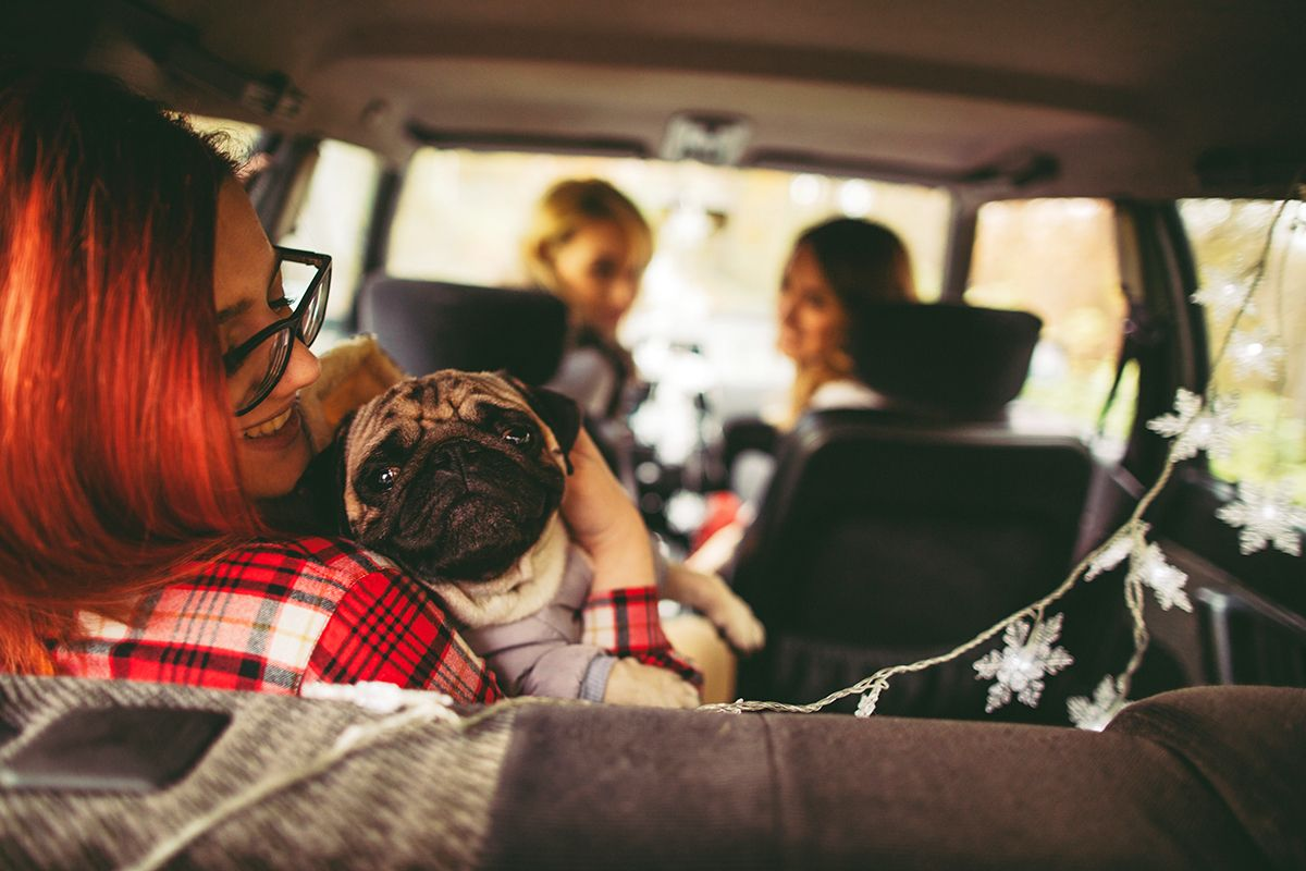 7 Painless Ways to Save Big on Car Insurance Premiums If