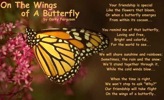 Legend Of The Butterfly Poem Everything Butterflies