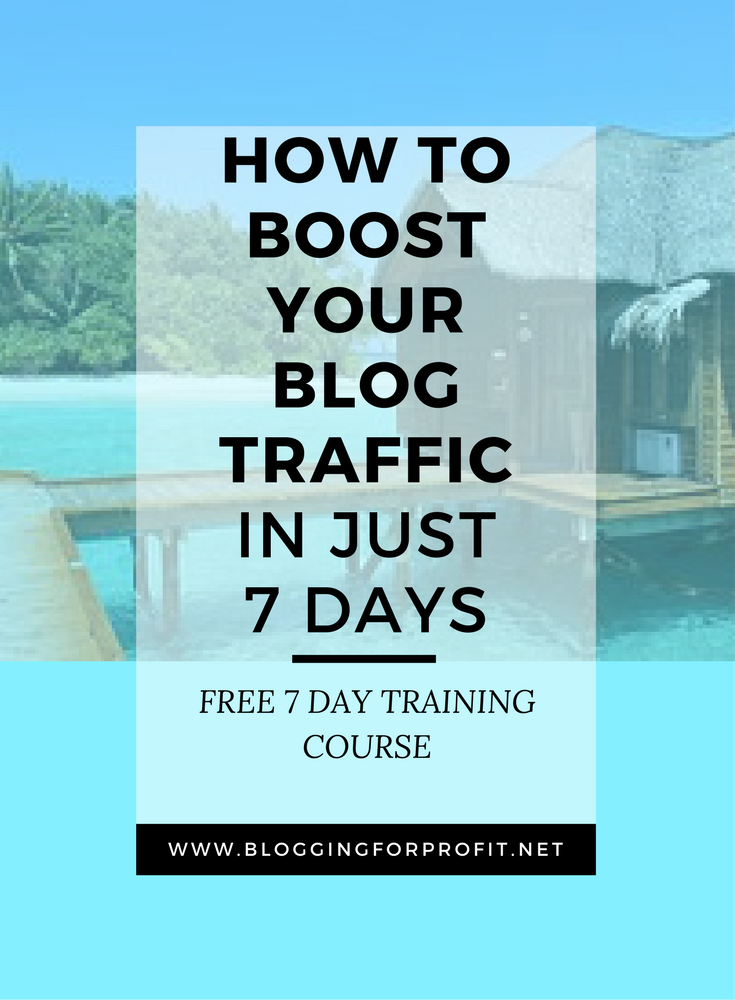How To Boost Your Blog Traffic in 7 Days – So you know how to write great blog posts but do you know how to promote them? Traffic is key to success. Market your blog and get more visitors. Let me show you how. | blogging for profit | blogging tips | blogger | Blogging for beginners | SEO | promote your blog -