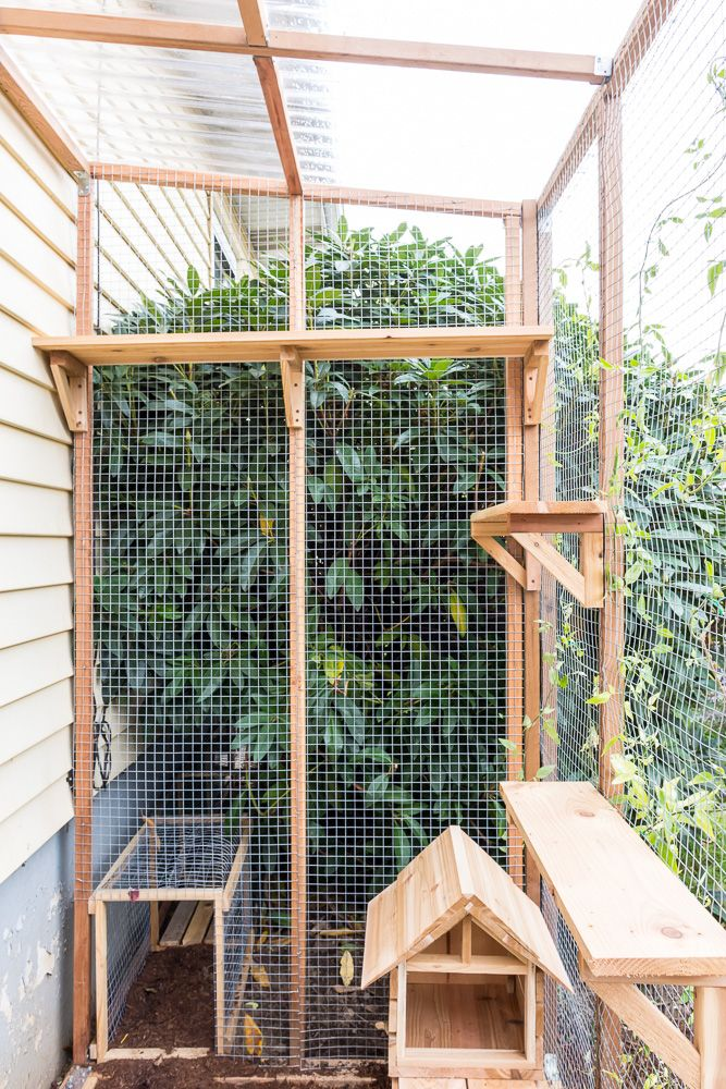 My Finished Catio, With Lots of CatioBuilding Tips Cat