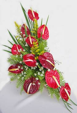 Dozen Anthuriums Kapruka Home Delivery In Sri Lanka Tropical Flower Arrangements Tropical Floral Arrangements Unique Flower Arrangements