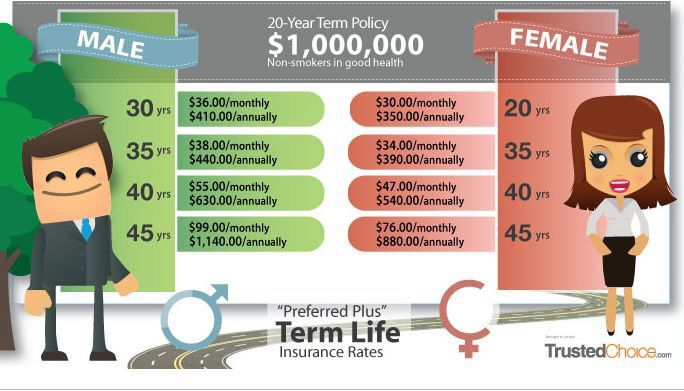 Whole Term Life Insurance Quotes Fair How Much Can Term Life Insurance Cost Not Much Get It While Your