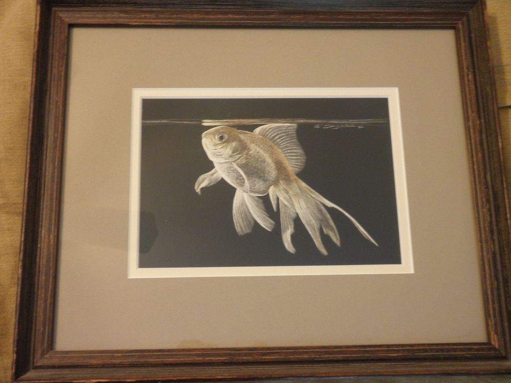 Sally Miller Maxwell Original Scratchboard Artwork // Goldfish // Signed #Realism