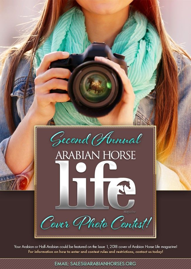 You Could Make The Cover! #ahlmag #ArabianHorseAssociation
