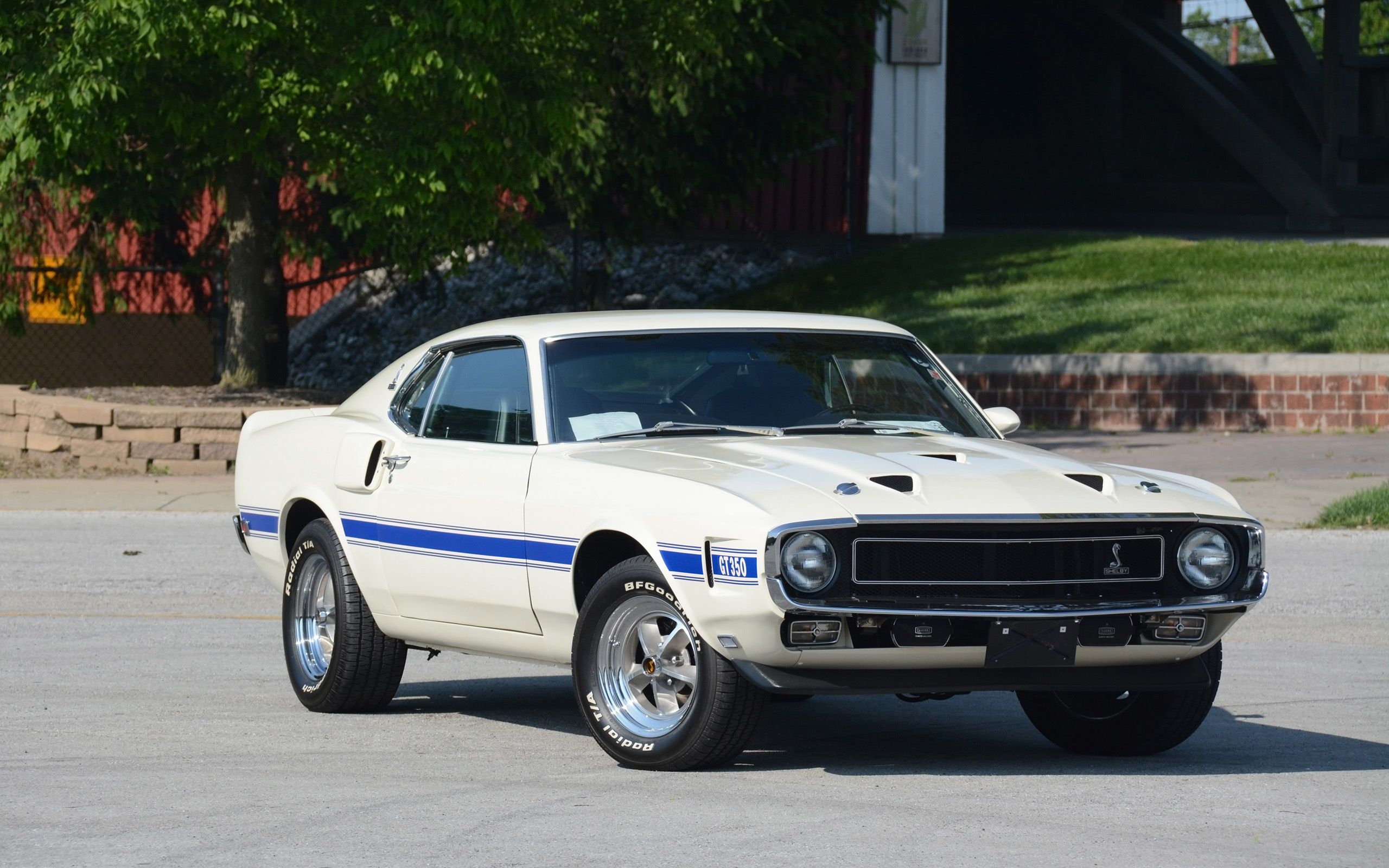 1969 Shelby Gt350 Fastback Classic Cars Muscle Classic Cars