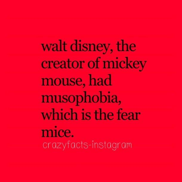 crazy fact crazy facts disney world fear fun facts image 667918 on favim facts facts facts pinterest disney disneyovsk postaviky a - Crazy Halloween Facts