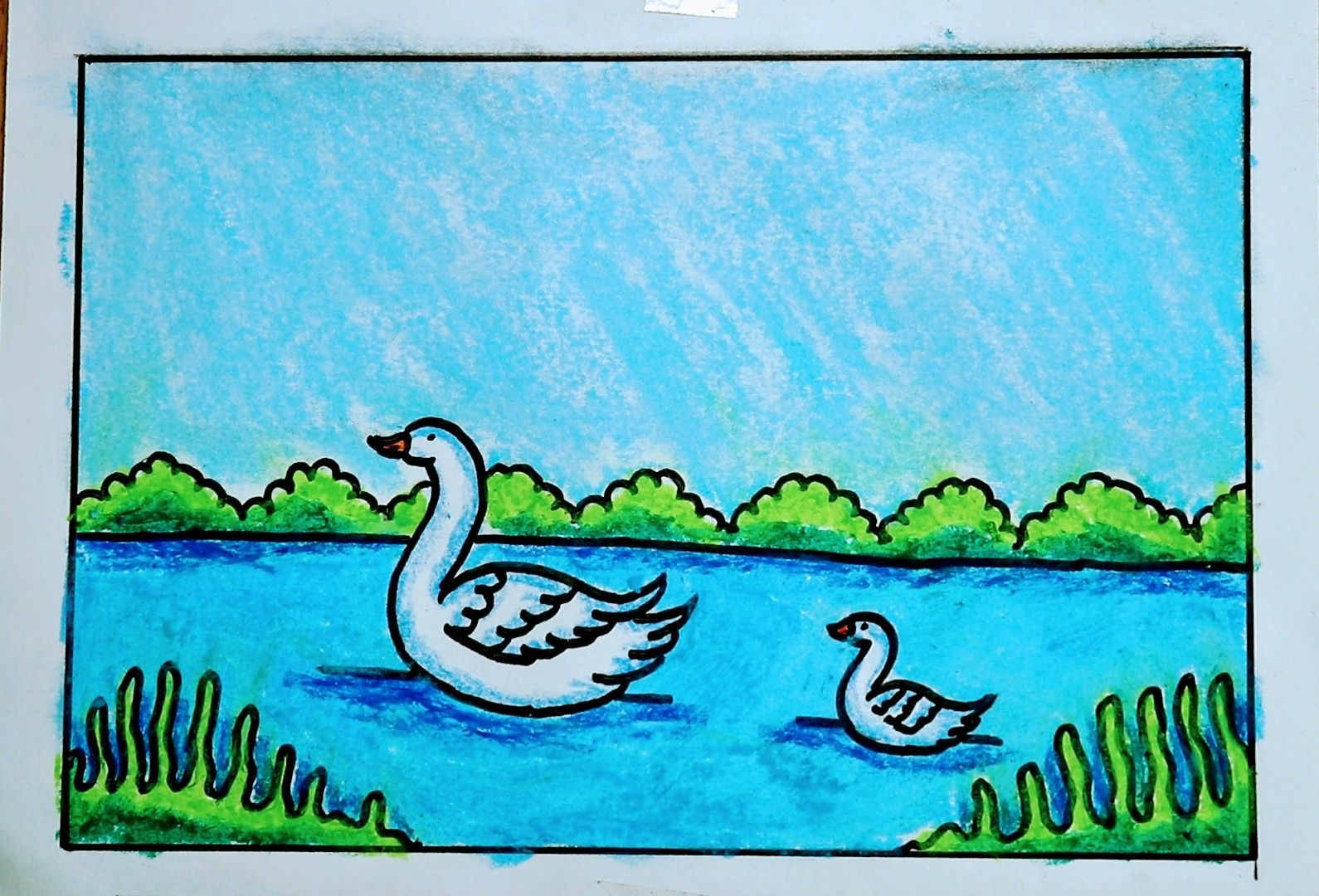Duck Drawing Easy Easy Animal Drawings Duck Drawing Rainbow Drawing
