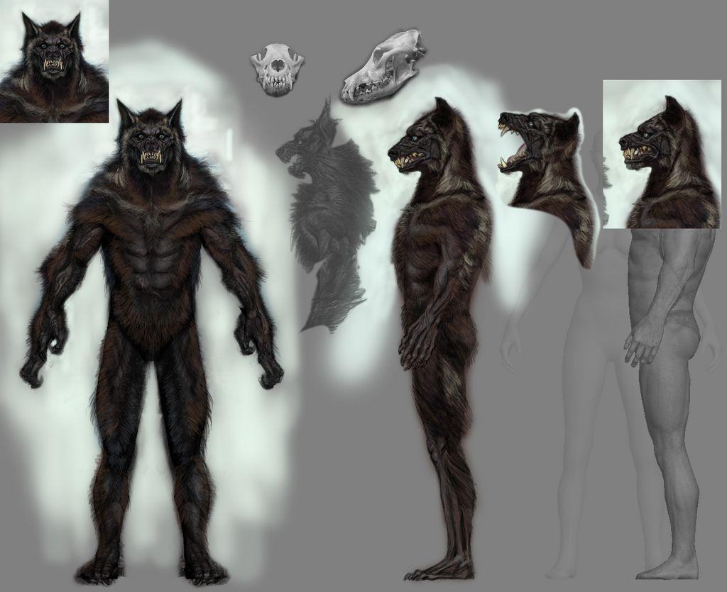 Wwolftemplate01 Skyrim Werewolf Werewolf Werewolf Art