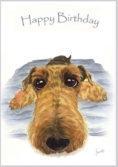 Birthday Card Airedale Terrier Dogs Lakeland 3737 Dianne Heap