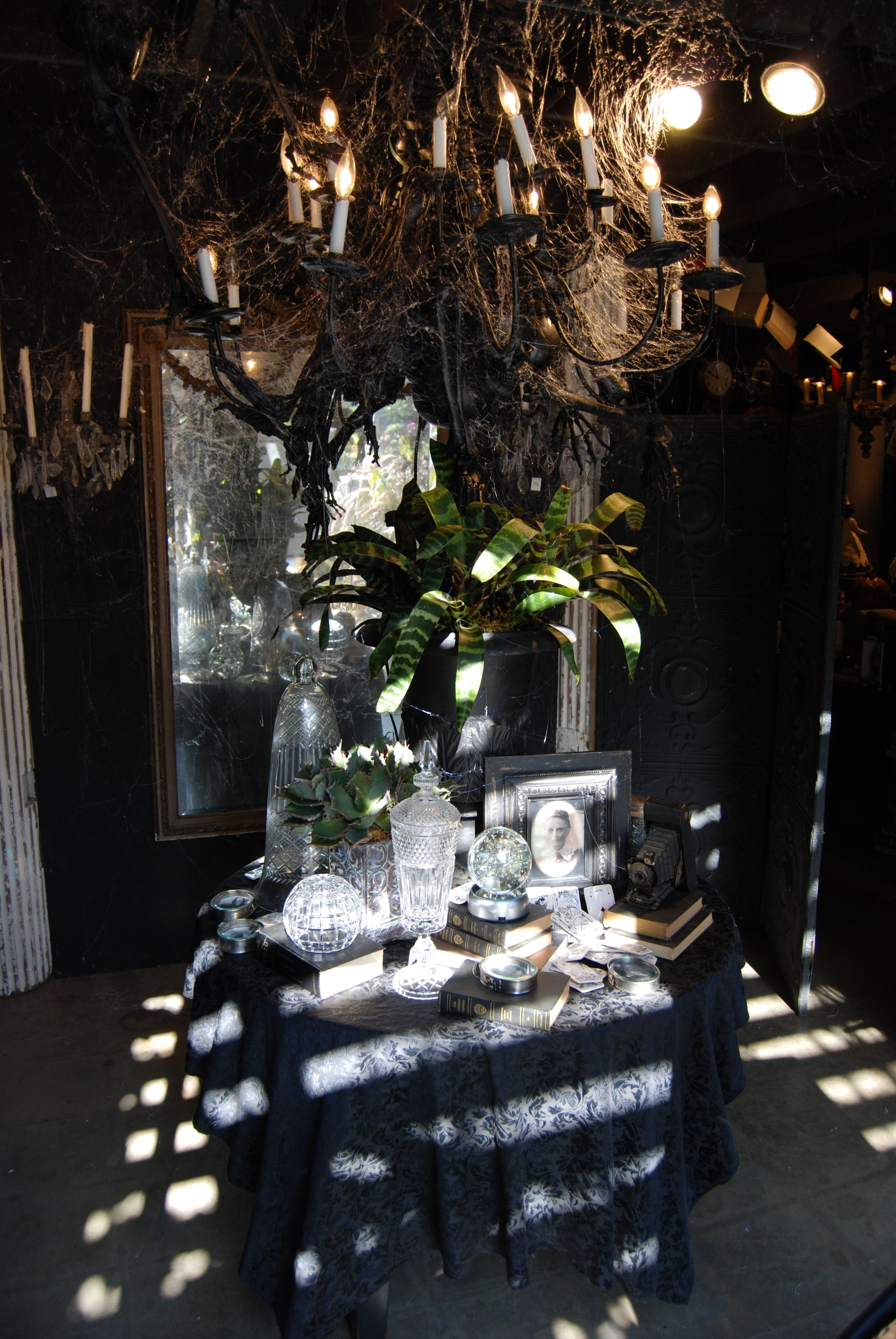 Halloween At Roger S Gardens Halloween Displays Halloween Decorations Indoor Rogers Gardens