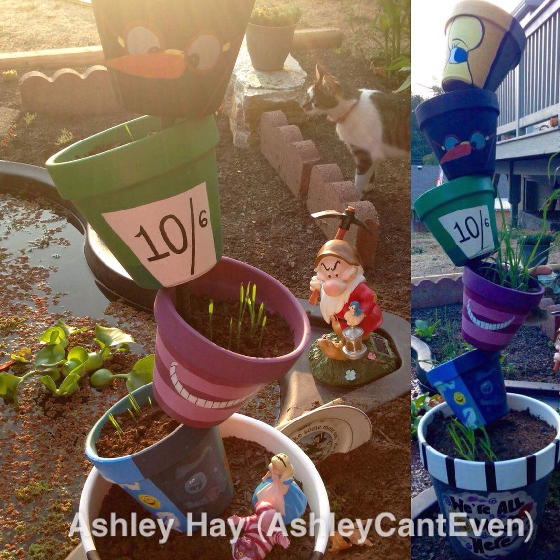 Free style painted Alice In Wonderland pots- summer 15\'. Alice ...