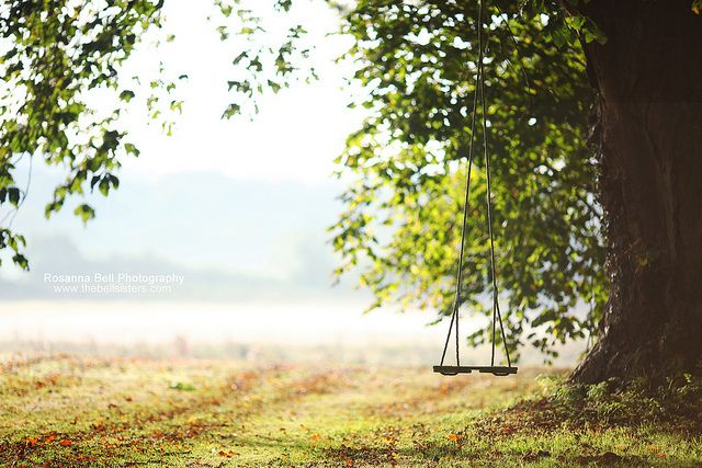 Swinging in the Autumn - Day 284/365 by Rosanna Bell, via Flickr