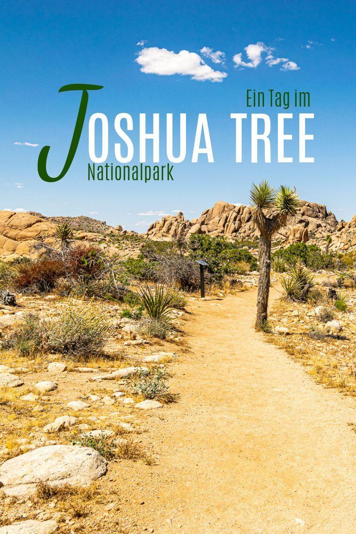 Joshua Tree National Park Guide - Sehenswürdigkeiten, Wanderungen und Tipps - AI SEE THE WORLD