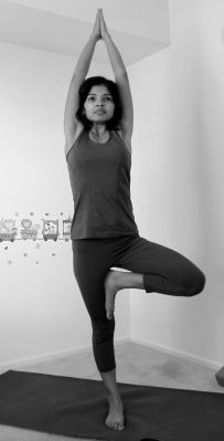vrikshasana  tree pose   yoga  tree pose poses live