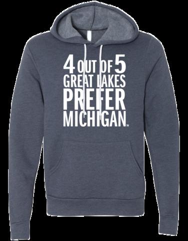 Great Lakes Michigan Hoodie, Michigan Sweatshirt, Great Lakes Shirt