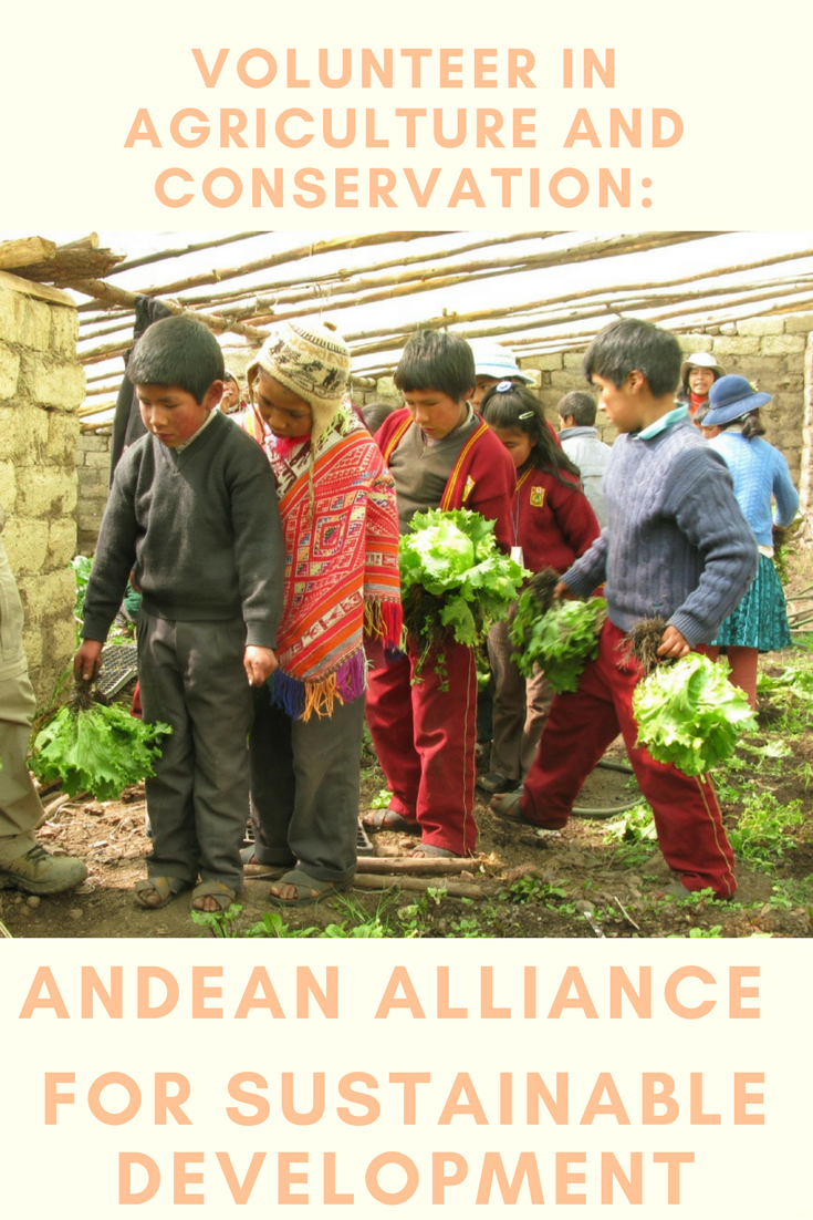 The greenhouse collective - Discover The Peruvian Highlands By Volunteering At Aasd And Help Them Develop The Greenhouse Initiative